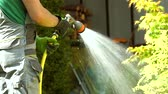 tuinman : Watering Backyard Garden Plants and Flowers