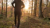 kocogás : Scenic Forest Run During Sunset. Sportsman During Fall Season Jogging