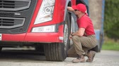 тележка : Caucasian Truck Driver Making Quick Tires Check. Transportation Industry.