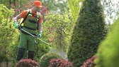 quintal : Caucasian Gardener and Garden Plants Insecticide Work. Spring Landscape Maintenance.