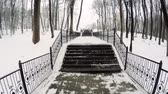korkuluk : Climbing the snow-covered winter stairs in the city Park. Stok Video