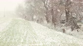 natal : Snowing in the Countryside Stock Footage