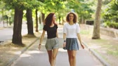 мода : Two beautiful girls walking and laughing at park. They are walking on a footpath with trees on background. Summer and sunny day settings. Lifestyle and friendship concepts. Vintage filter added. Стоковые видеозаписи