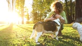 cabelos cacheados : Woman playing with dogs at park or in the backyard. Slow motion video. Autumn colors, unstaged situation with candid model and playful dogs. Lifestyle and friendship concepts.