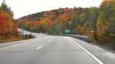 красочный : Driving on the American highway with trees around in autumn. Empty road in Ontario, Canada, with colorful maple trees during the fall season. Travel and transportation concepts