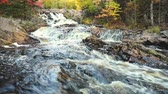 красочный : Colorful trees along creek with rapids in autumn. Autumn view in Canada with maple trees on the side of a small river. Nature and tranquil scene with beautiful colors Стоковые видеозаписи