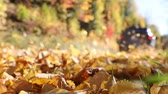 passar : Leaves flying as a car passes on the road. Fallen leaves in autumn fly away with wind. Slow motion view of a car on a countryside road. Travel and nature concepts Stock Footage