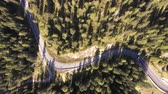 enrolamento : Aerial top view of mountain road through the wood and car passing - Aerial video of Dolomites in Italy with countryside road running through green trees - Travel and nature concepts Stock Footage