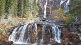 emaranhado : Tangle Falls Jasper National Park