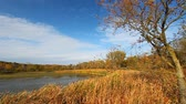 hydrology : Rock Cut State Park of northern Illinois on a breezy autumn day Stock Footage