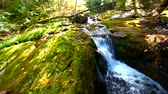hydrology : Cascades of the Union River Gorge in Porcupine Mountains Wilderness State Park