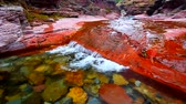 hydrology : Red Rock Canyon in Waterton Lakes National Park Canada Stock Footage