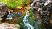 Small creek cascade in the Lewis and Clark National Forest of Montana