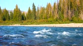 Flathead River near Glacier National Park