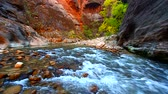 Virgin River flow through The Narrows of Zion Canyon in Utah