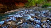 Zion National Park VIrgin River Narrows Stock Footage