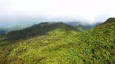 Mist covers the rainforest peaks of El Yunque National Forest in Puerto Rico Stock Footage