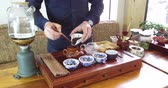 чайная ложка : Brewing Chinese tea in a ceramic gaiwan during the tea ceremony close-up. Gaiwan and other tea tools for the ceremony Стоковые видеозаписи