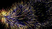 Multicolored fireworks on a black sky background. Particle magic explosion animation. Abstract neon futuristic glowing wave that sparkles and twirl. Shining design element on a black background Filmati Stock