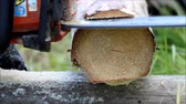 The worker does sawing in a log, which will serve as the basis for the floor in a wooden field with a chainsaw.