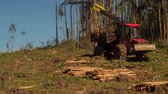 lumber industry : Timelapse shot of a logging machine picking up tree trunks Stock Footage