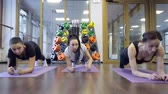 wellbeing : Trainer with her group of women do exercise based on plank in studio.