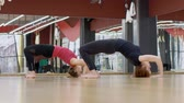 espaçoso : Flexible women is performing bridge exercise in modern studio. Two females practice yoga asanas in sports club indoors. Young fitness ladies train diligently on floor, leaning with hands and bare feet on hard surface, lowering head down in spacious room w Vídeos