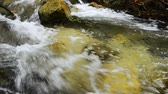víztároló : Close up footage,river rapids flowing through mossy rock