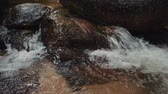 çevre : Close up footage,river rapids flowing through mossy rock