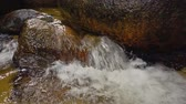molhado : Close up footage,river rapids flowing through mossy rock