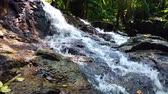 Beautiful cascading tropical river surrounded by green forest, wet and mossy rock.