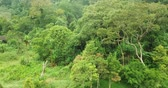 oeste : Beautiful aerial view of lush green rainforest on the Situ Gunung lakeside at Sukabumi, West Java, Indonesia. Shot in 4k resolution Vídeos