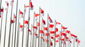 kutlama : Indonesia flags waving on the flagpole against clear sky. Shot outdoors in 4k resolution