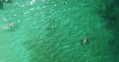 gili : LOMBOK, Indonesia - April 22, 2019: Beautiful top down view of people snorkeling on turquoise water in Gili Nanggu Island at Lombok near Bali. Shot in 4k resolution from a drone flying upwards