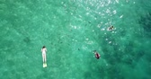 gili : LOMBOK, Indonesia - April 22, 2019: Top down view of tourists enjoy snorkeling to see fishes on turquoise sea water at Gili Nanggu Island in Lombok near Bali. Shot in 4k resolution from a drone