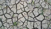 meddő : Top view of dry and cracked mud on the farmland during dry season. Shot in 4k resolution