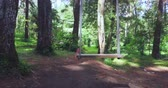 de espaldas : Empty swing hanging and swinging at the pine forest. Shot in 4k resolution from a drone flying backwards