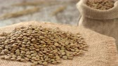 mercimek : Close-up of lentil rotating on burlap. Rustic wooden background. Seamless loopable. Stok Video