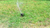 Water sprinkler in public park. Automatic irrigating system watering green grass lawn outdoor. Summer morning in Europe. Spray and drops of aqua watering leaves