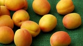 джут : Ripe apricots. Green background. Food for a vegan and a vegetarian. Diet, detox, food concept.