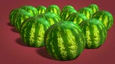 wiggle : Ripe whole watermelons on red background close-up. 4k video. Stock Footage