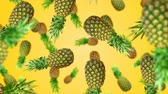 ananas : Pineapples falling down on yellow background. 4k video.