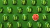 outstanding : Colorful fruit pattern of fresh watermelons on green background. Individuality, independence and uniqueness concept. 4k video.