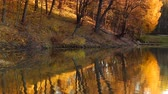 ahornbaum : Evening in the autumn city park. Trees are reflected in the pond. Ukraine, Kyiv. Feofania park.