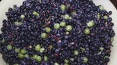 виноградник : Amazing sprinkling, of pink and violet grapes close up, rotating to the right on black background. Eco product for healthy food. Excellent vegetarian macro with vibrant texture.