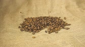 黄麻布 : Roasted coffee beans close up. Hands holding roasted coffee grains.