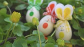 króliczek : Easter Bunny on a Spring Day 4K Loop features a stuffed bunny looking at an animated cloudy sky in a field of green grass filled with Easter eggs