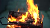 grelhado : In the grill with a strongly burning wood man corrects tongs firewood and puts it in the fire new burning coals. Stock Footage