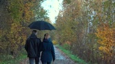 A slender, gray-haired man with glasses and a slender, pretty, middle-aged woman walk along an autumn Park Avenue under a black umbrella, admiring nature, talking and smiling.