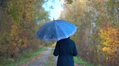ladin : A slender, sweet woman in a blue jacket and blue jeans walks through the autumn Park on wet paths under a blue umbrella with white polka dots in the fall.